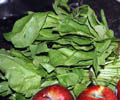 spinach palak vegetable images free nature photos pictures